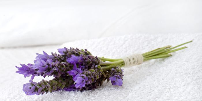 A popular and traditional scent for aroma therapies, lavender has been the focus of extensive clinical studies for its effect on sleep.